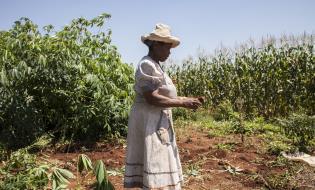 smallholder_africa